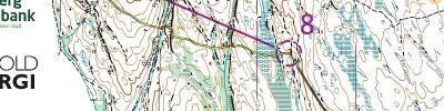WOC 2019 Middle Qualification (2019-08-13)